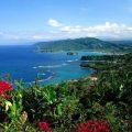 jamaic
